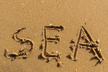 Sea - the word drawn on a yelow wet sand.