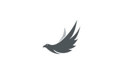 fly bird vector