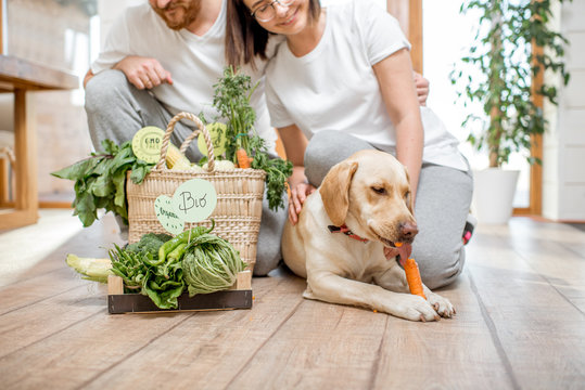 Young lovely couple sitting together with their dog and fresh green vegetables at home