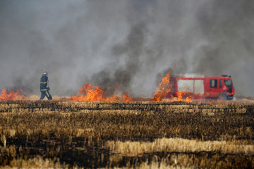 A French fireman walks near flames in a burning field of barley during harvest season in Niergnies