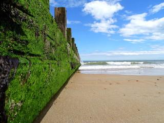 Am Strand von Aberdeen