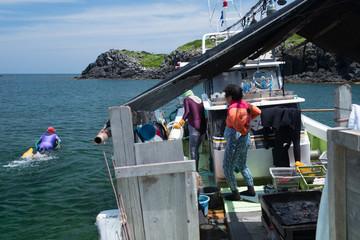 乗合船から漁場へ泳ぎ向かう海女たち