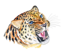 Leopard. Portrait of a wild cat. Aggressive leopard. Watercolor. Illustration. Template. Close-up.