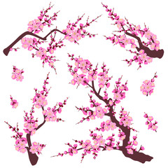 Plum Blossom Branches Set