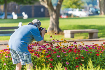 A man taking picture of flowers in a garden