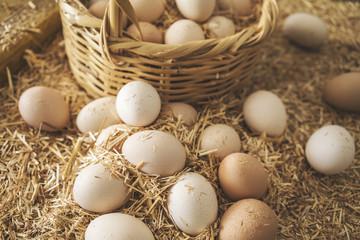 Fresh raw eggs in straw basket