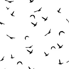 Seamless abstract pattern with black flying birds on white background.