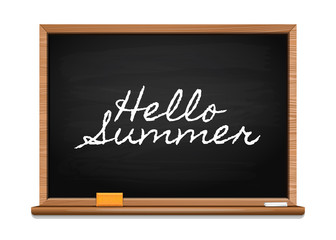 Inscription on the board. Hello summer. Summer lettering design. Vector illustration isolated on white background