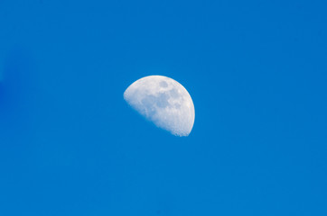 Large moon in the sky