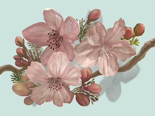 Hand-drawn blossoming Sakura on a branch