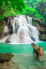Wall Mural - Waterfall in the deep forest in National Park, Thailand