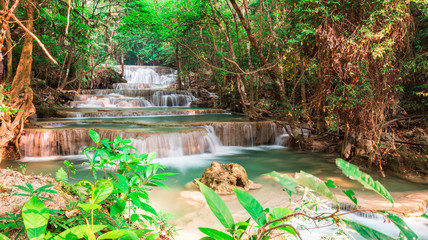 Wall Mural - Landscape waterfall in the jungle Thailand