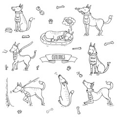Hand drawn doodle set of cute dogs icons Vector illustration set. Cartoon normal everyday home pets activities symbols. Sketchy puppy col