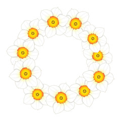 White Daffodil - Narcissus Flower Wreath