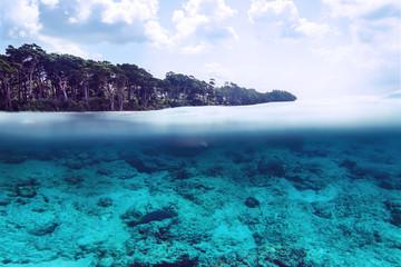 Tropical sand beach split above and below water, Bali, Indian Ocean