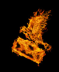 orange flame flying dove with envelope on black
