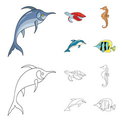 Merlin, turtle and other species.Sea animals set collection icons in cartoon,outline style vector symbol stock illustration web.