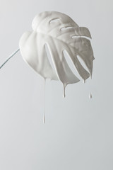 White painted monstera tropical leaf with dripping paint
