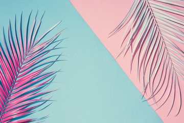 Tropical bright colorful background with exotic painted tropical palm leaves. Minimal fashion summer concept. Flat lay. Fotoväggar