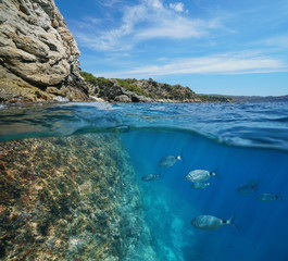 Mediterranean sea rocky coast with fish underwater, split view above and below water surface, Spain, Costa Brava, Roses, Punta Falconera, Catalonia, Girona