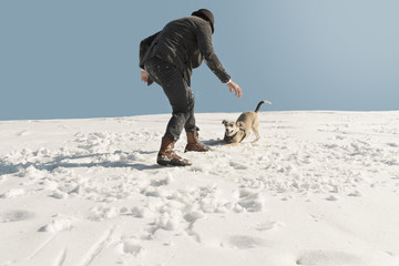 Man playing with dog in winter, having fun in the snow