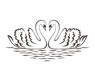 Swan couple silhouette. Vector illustration.