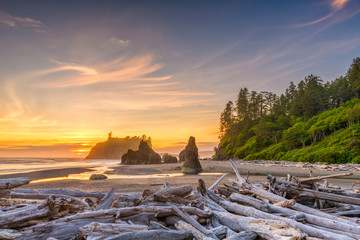 Fototapete - Olympic National Park, Washington, USA