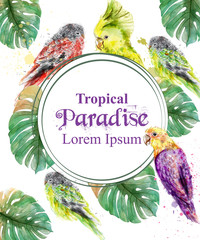 Tropical paradise frame with parrots and palm leaves watercolor Vector illustrations