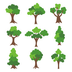 tree collection isolated on white background. vector tree set design.