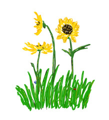 Bright sunflowers on the lawn with ladybird, butterfly. Beautiful garden design with blossom yellow flowers for kids room, interior, scrapbook, wrapping paper, pillows, decor, covers