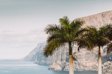Wall Mural - Great view of Los Gigantes mountain cliff in Tenerife, Spain.