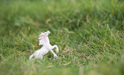 Unicorn. A closed up of a miniature of a unicorn in the garden with shallow depth of field, soft focus and dreamy effect for background and copy space.