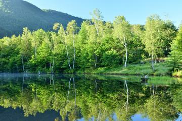 朝日が当たる乗鞍まいめの池
