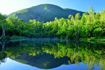 夜明けの乗鞍まいめの池