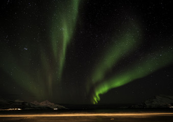 Northern light dancing across starry sky in Norway