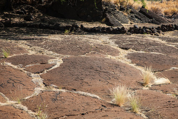 Petroglyph Landscape on Hawaii's Big Island