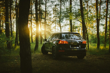 Wall Mural - Black car is parked at countryside off-road in forest at sunset