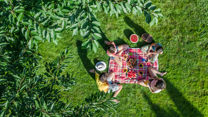 Happy family having picnic in park, parents with kids sitting on grass and eating healthy meals outdoors, aerial view from above
