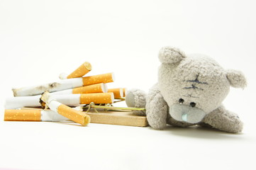The hazards of smoking for children. Bear stuck in a mousetrap with cigarettes.