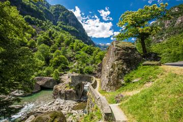 Bavona river with Swiss Alps in canton Ticino, Bavona valley, Switzerland, Europe