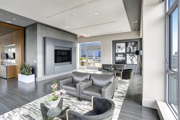 Modern interior design of living area in grey colors