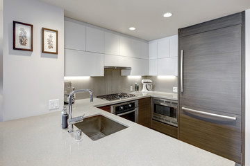 Modern style kitchen with wood paneled refrigerator.