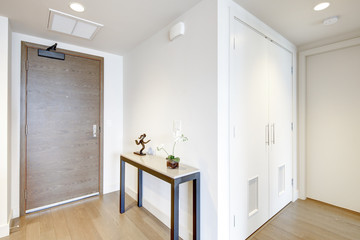 White entrance hallway with console table