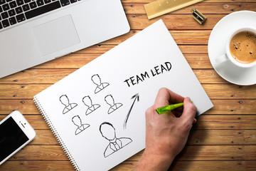 Team Lead