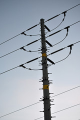 Electrical Pole with 5 Power Lines