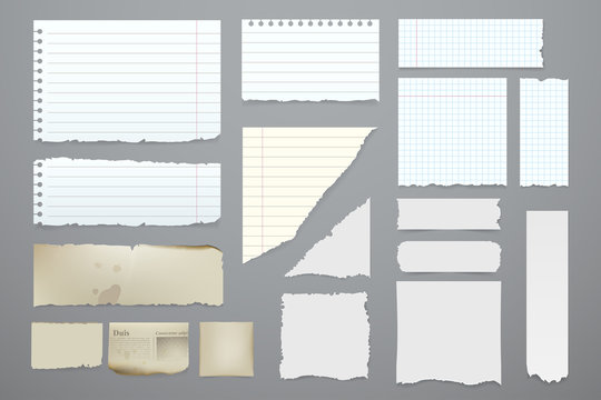 Vector pieces of torn notebook. Torn pieces of paper set. White blank paper sheets in a cage, in a line and aged. Elements for you design. Eps 10