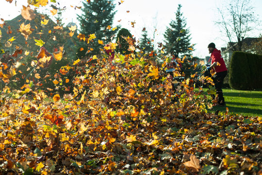 Autumn leaves being blown away with man in the background