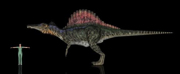 恐竜縮尺図・スピノサウルス