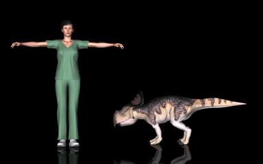 恐竜縮尺図・プロトケラトプス