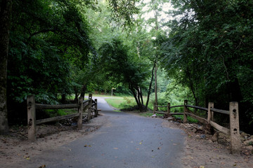 An early morning stroll on the greenway around Shelley Lake in Raleigh North Carolina